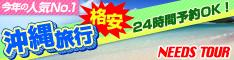 ニーズツアー沖縄旅行